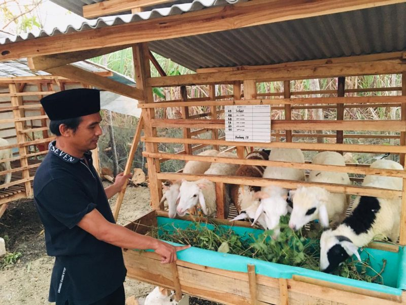Mohammad Nasih sedang Meninjau NUFO Farm