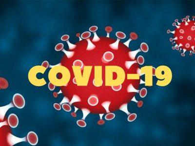 Benarkah Senyawa Hisperidin Mampu Menghambat Pertumbuhan COVID-19 Ini Penjelasannya