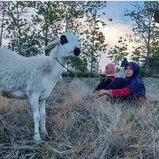 Sekolah Alam Indonesia