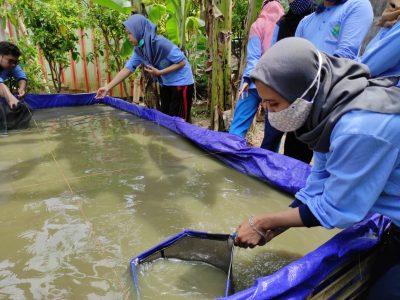 Peluang Usaha Mahasiswa di Tengah Pandemi